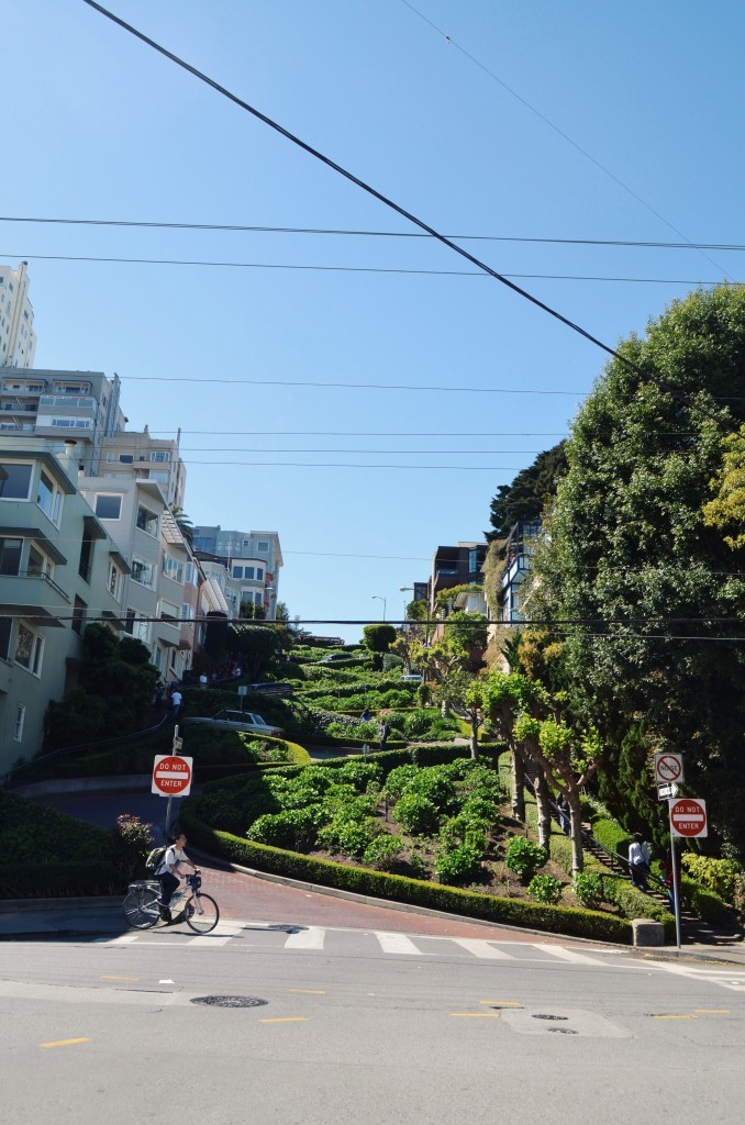 Looking up at the winding road of Lombard Street. Photo by Chloe Valdez